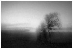 By Sasa Gyoker