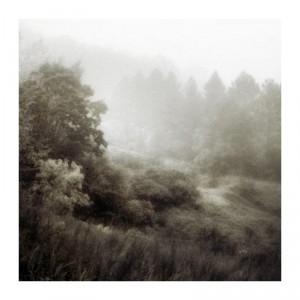 Th field by Sasa Gyoker
