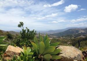 Temecula Vista Hills 1