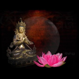 vajradhara-buddha-lotus-h-kopp-delaney